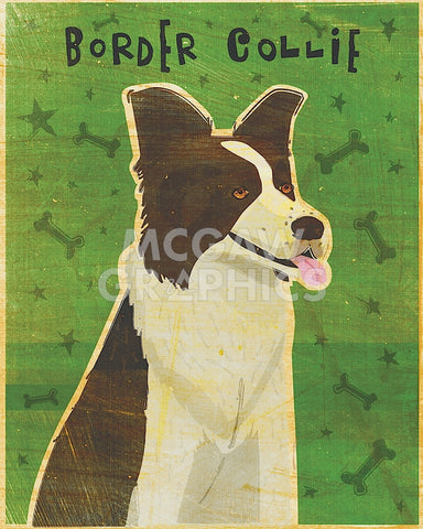 Border Collie -  John W. Golden - McGaw Graphics