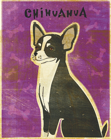 Chihuahua (black and white) -  John W. Golden - McGaw Graphics