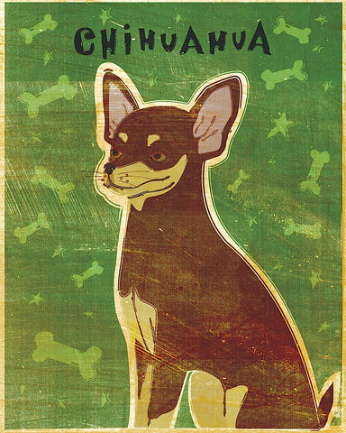 Chihuahua (chocolate and tan) -  John W. Golden - McGaw Graphics