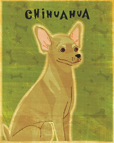 Chihuahua (tan) -  John W. Golden - McGaw Graphics