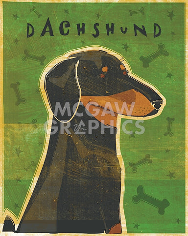 Dachshund (black and tan) -  John W. Golden - McGaw Graphics