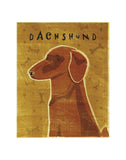 Dachshund (red) -  John W. Golden - McGaw Graphics