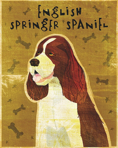 English Springer Spaniel -  John W. Golden - McGaw Graphics