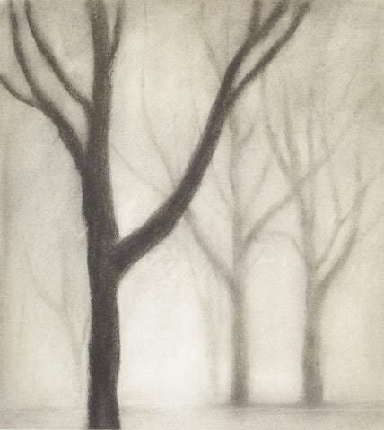 Gretchen Hess - Forest I