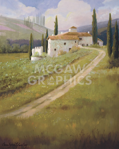 Carolyne Hawley - Tuscany Vineyard
