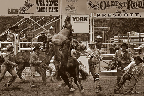 Rodeo Daze -  Barry Hart - McGaw Graphics