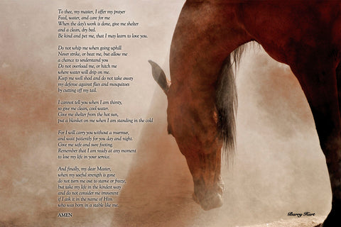 The Horse's Prayer -  Barry Hart - McGaw Graphics