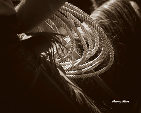 Cowboy Rope -  Barry Hart - McGaw Graphics
