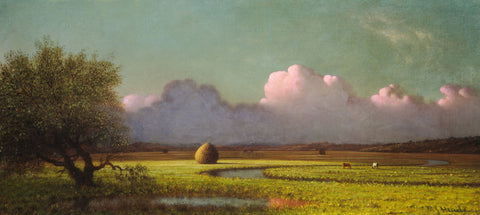 Sunlight and Shadow: The Newbury Marshes, c. 1871/1875 -  Martin Johnson Heade - McGaw Graphics