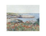 Poppies, Isles of Shoals, 1891