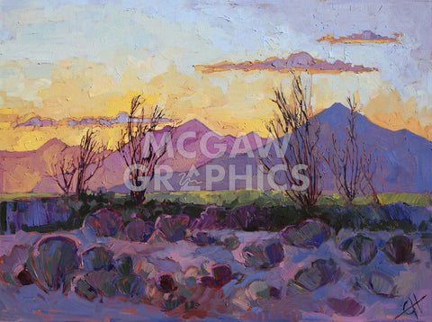 Violet Point -  Erin Hanson - McGaw Graphics