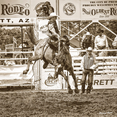 Rodeo -  Barry Hart - McGaw Graphics