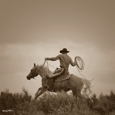 Palomino Cowboy -  Barry Hart - McGaw Graphics