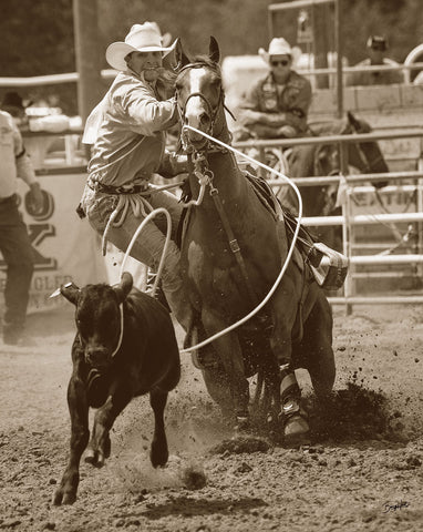 Calf Ropin' -  Barry Hart - McGaw Graphics