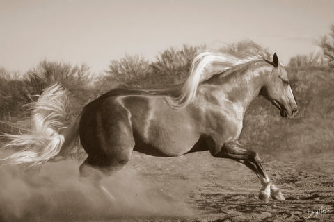 Platinum Centerfold (sepia) -  Barry Hart - McGaw Graphics