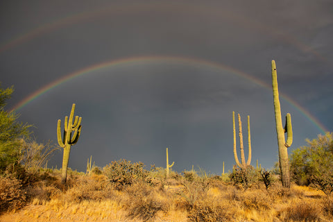 Arizona Rainbow -  Barry Hart - McGaw Graphics