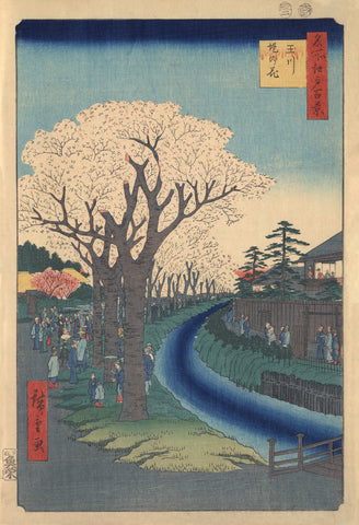 Sightseers Viewing Cherry Blossoms along the Banks of the Tama River at Edo -  Ando Hiroshige - McGaw Graphics
