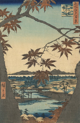 Bird's-eye View Through Maple Trees of the Tekona Shrine -  Ando Hiroshige - McGaw Graphics