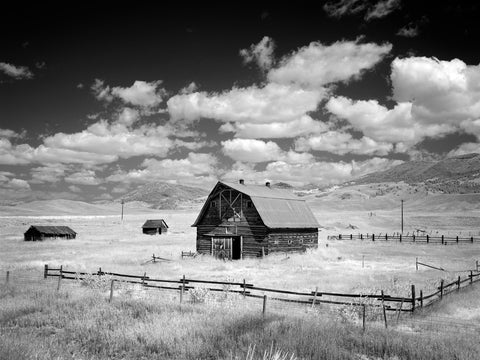 Barn, Rural Montana -  Carol M. Highsmith - McGaw Graphics