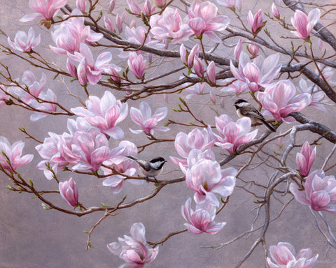 Spring Blossoms - Chickadees and Magnolias - McGaw Graphics
