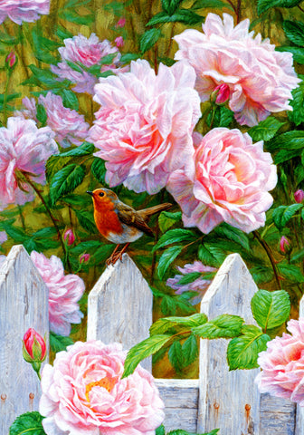Morning in Provence - European Robin and Roses - McGaw Graphics