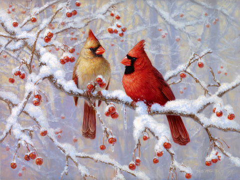 Winter Joy - Northern Cardinals - McGaw Graphics