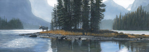 Spirit Island Moose -  Terry Isaac - McGaw Graphics