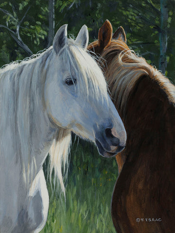 Horse Whispering -  Terry Isaac - McGaw Graphics