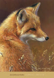 Curious - Red Fox -  Joni Johnson-Godsy - McGaw Graphics
