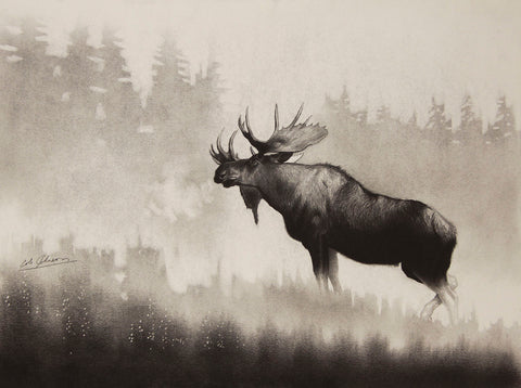 Bull Moose -  Cole Johnson - McGaw Graphics