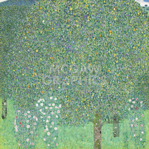 Gustav Klimt - Rosebushes under the Trees, ca. 1905