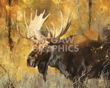 Autumn Moose Study #1 -  Mark Kelso - McGaw Graphics