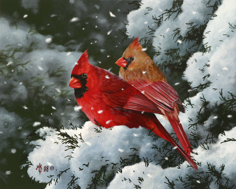Winter Harmony -  Mark Kelso - McGaw Graphics