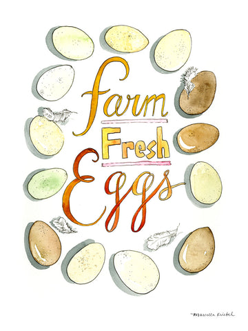 Farm Fresh Eggs -  Marcella Kriebel - McGaw Graphics