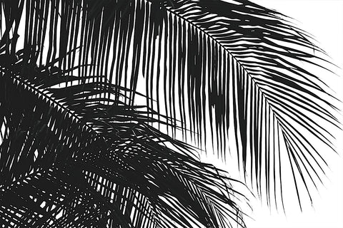 Palms 3 -  Jamie Kingham - McGaw Graphics