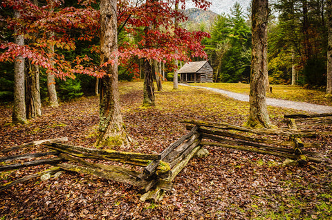 Smokies Cabin -  Robert Lott - McGaw Graphics