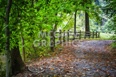 Laurels Pathway -  Robert Lott - McGaw Graphics