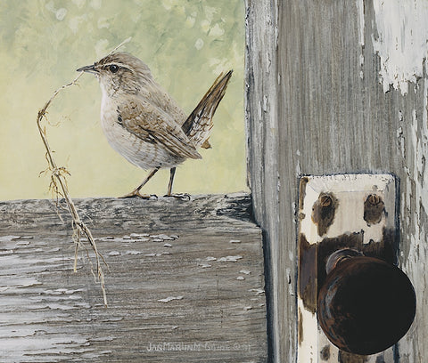 Jan Martin McGuire - House Wren