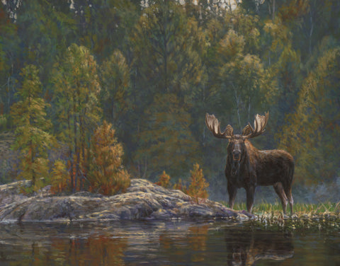 Bruce Miller - North Country Moose