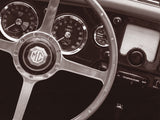 Steering Wheel -  John Maggiotto - McGaw Graphics