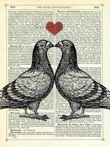 Pigeons in Love -  Marion McConaghie - McGaw Graphics
