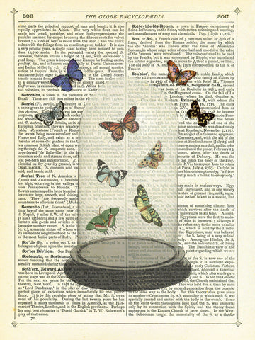 Butterfly Dome -  Marion McConaghie - McGaw Graphics