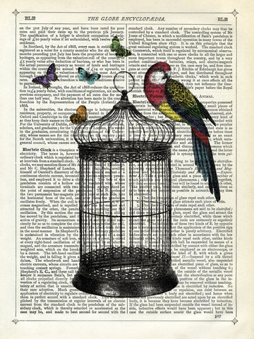 Bird Cage and Parrot -  Marion McConaghie - McGaw Graphics