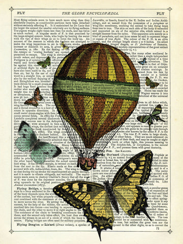 Butterflies & Balloon -  Marion McConaghie - McGaw Graphics