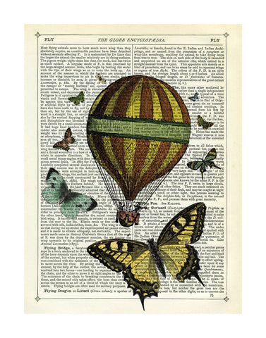 Butterflies & Balloon