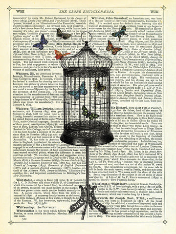 Bird Cage & Butterflies -  Marion McConaghie - McGaw Graphics