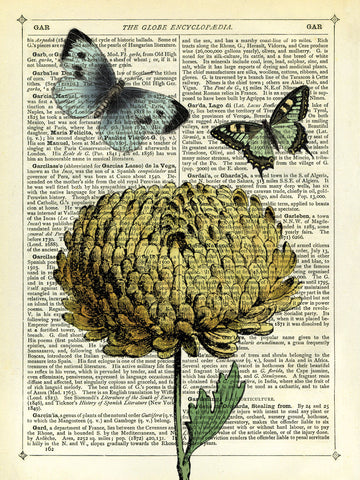Flower & Butterflies -  Marion McConaghie - McGaw Graphics