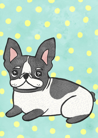 Boston Terrier -  My Zoetrope - McGaw Graphics