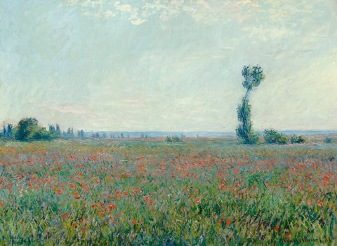 Claude Monet - Poppy Field, 1881
