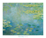 Waterlilies, ca. 1906